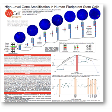 Poster # W-3233 High-level Gene Amplification in Human Pluripotent Stem Cells