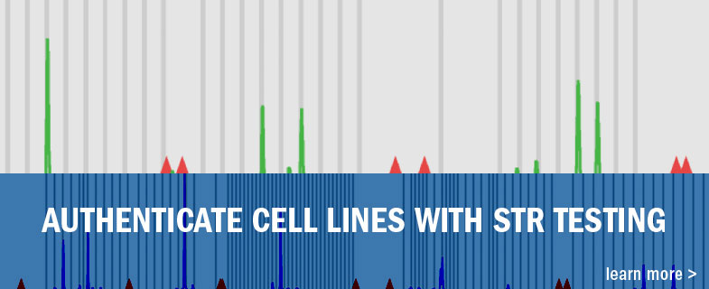 Authenticate Cell lines with STR Testing